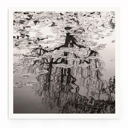 """""""Flowing Tree"""" Art Print von Lena Weisbek. Baum Spiegelung im Wasser in schwarz-weiß, im Wabi-Sabi Stil."""