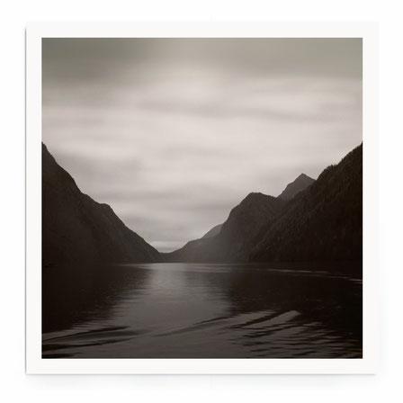 """""""Country Lane"""" - Stimmungsvolle Nebel-Landschaft mit Feldweg und Bäumen.."""