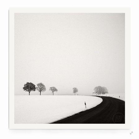 """""""Rural Winter Road"""" - Minimalistische Fotografie einer Landchaft mit Straße und Bäumen."""