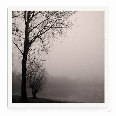 """""""Foggy Day"""" - Minimalistische See-Landschaft mit Bäumen in schwarz-weiß."""
