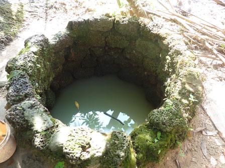Exemple d'un puits local dont l'eau insalubre est consommée par la population.
