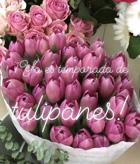 Cubo de tulipanes. Romántico. San Valentín. Flores