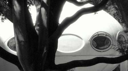 A Futuro house landed in the Christchurch Botanic Gardens
