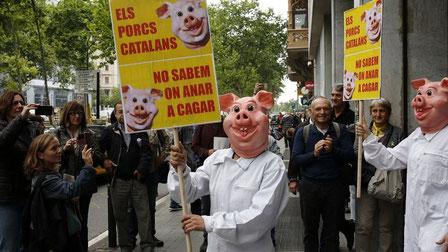 """Manifestants disfressats amb el lema """"Els porcs catalans no sabem on anar a cagar"""" FRANCESC MELCION"""