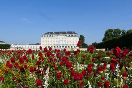 Gartenreise Deutschland: Der Barockgarten von Schloss Augustusburg in Brühl zwischen Köln und Bonn