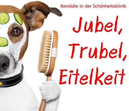Hund mit Wellnessmaske. Dazu der Titel: Jubel, Trubel, Eitelkeit