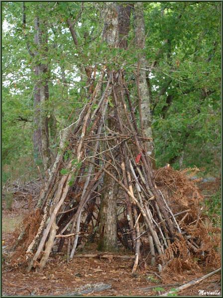 Cabane au fond des bois, forêt sur le Bassin d'Arcachon (33)