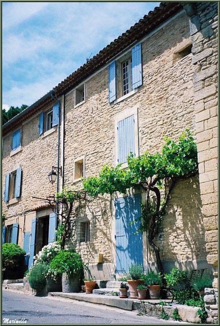 Ruelle et façade à la treille - Goult, Lubéron - Vaucluse (84)
