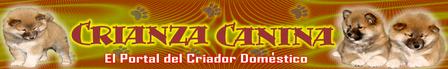 CRIANZA CANINA... pinchando el logo.