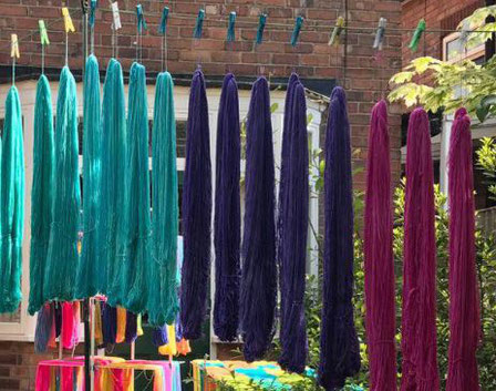 Freshly dyed yarn skeins hanging out in the sun to dry. Teal, purple, deep pink.