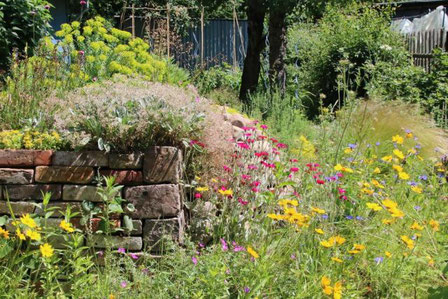 Informationen zum naturgarten naturschutz vor ort for Naturgarten gestalten