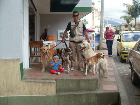 Paseadores en Medellín... presionando la foto.
