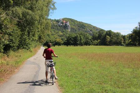 Schifffahrt durch den Donaudurchbruch, Weltenburger Enge und zum Kloster Weltenburg