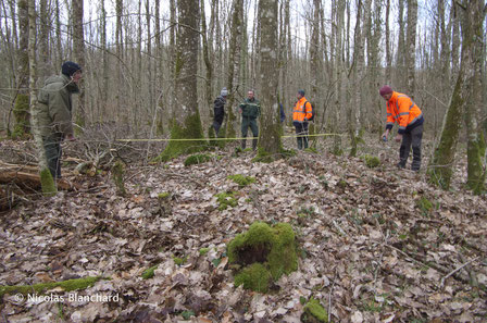 Prise de mesures sur un tertre en pierre. Forêt Normande.