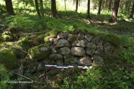 Muret de pierre sèche, limite d'un parcellaire à vocation agricole en forêt domaniale d'Ecouves