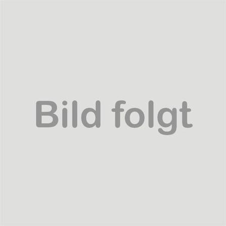 oben v.l.n.r.:  F. Horbach, K. Hohenforst, I. Franken, U. HUrtz, U. Riese, unten v.l.n.r. S. Stelter, M. Bethke, C. Hübner, M. Eggerath