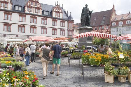 Kulinarische Stadt Rallye
