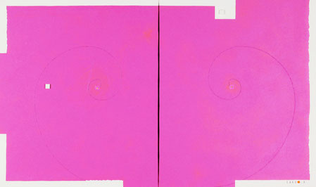 PLASMA MANIFOLD (STARSHIP)  3  760mm×455mm  F8×2   Acrylic, wood   2017