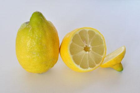 Huile essentielle ou essence de citron, anti-nauséeux universel, immunostimulant, antiseptique atmosphérique