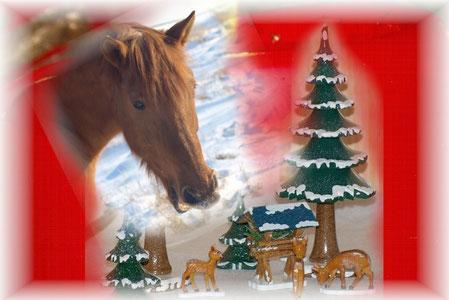 Weihnachten... mit Schnee von letztem Jahr (haha)