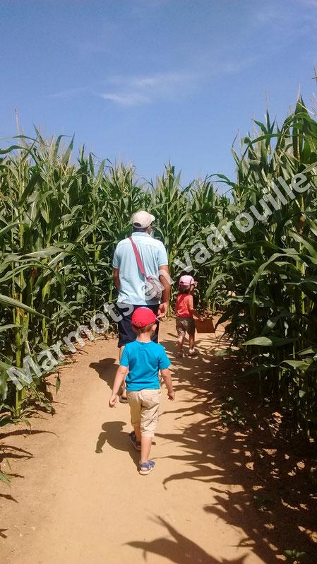 Labyrinthe de maïs de Caen