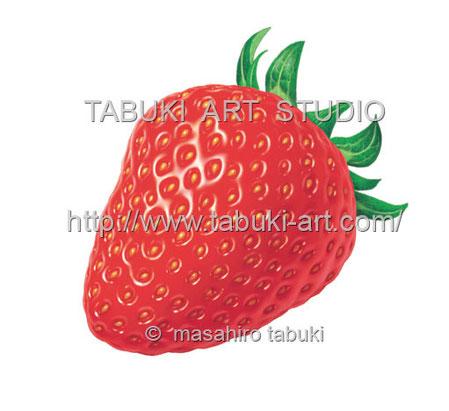 素材イラスト イチゴ いちご 苺 ストロベリー 商用利用 ストックイラスト くだもの シズルイラスト リアルイラスト 苺の絵