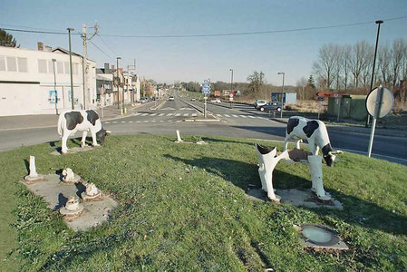 Les vaches du rond-point