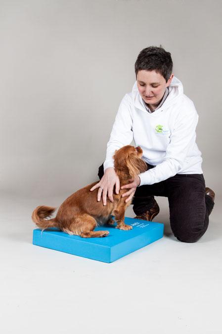 Bild: Therapeutin und Hund auf Airexpad