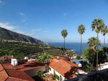 Meerblick an Palmen vor bei auf die Küste bei Los Realejos