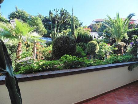 Blick in einem vielseitig gestalteten Garten.