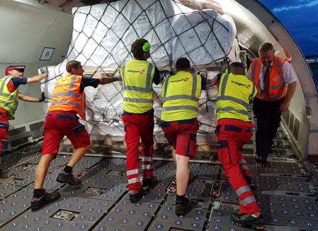 Swissport staff pushing dept away  -  photo: CFG