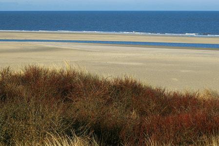 Blick über Strand und See