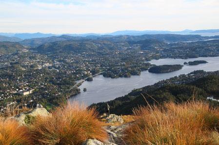 Der Fjord von oben