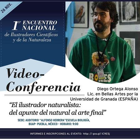 primer encuentro nacional de ilustradores científicos y de naturaleza. Conferencia de Diego Ortega Alonso ilustración naturalista