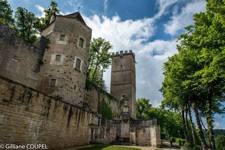 Montbard, la forteresse
