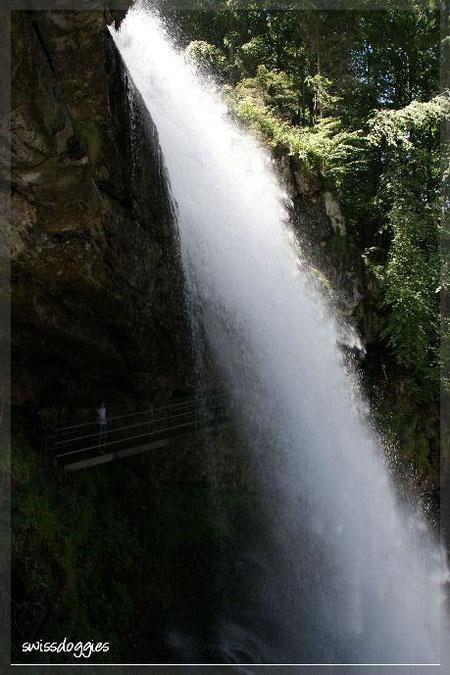 Auf dem Rückweg besichtigten wir noch die imposanten Giessbachfälle; links auf der Brücke ist Nathi.