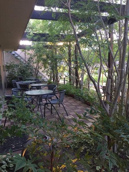 外のガーデンテラス席。シマトネリコが植栽されていて、日も当たらず心地よい。