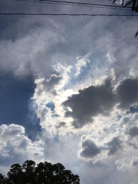 実験開始から1時間で空に雲が・・・太陽が隠れてしまった。