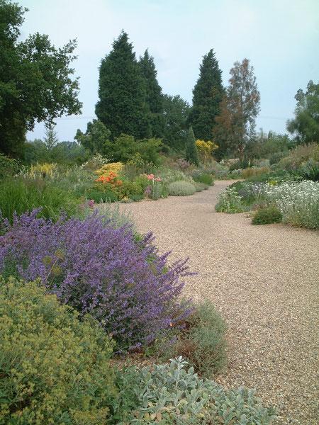 砂利と植物だけで構成された庭 ここから学ぶ事は沢山有る