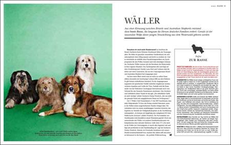 dogs 3/2011, Seite 18/19