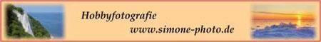 Simone bietet eine voelseitige, abwechslungsreiche Galerie