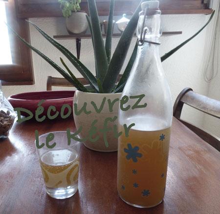 Une boisson riche en probiotiques à faire soi-même
