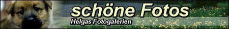 schoene-fotos
