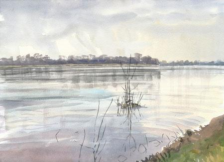 La Loire (Maine-et-Loire, mars 2015)