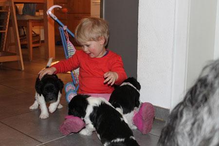 Lotta liebt die Babys und umgekehrt genauso!
