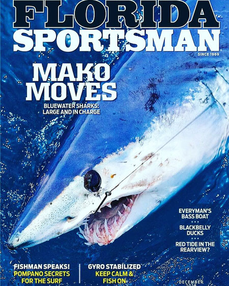Mako Moves Bluewater Sharks: Large and in Charge
