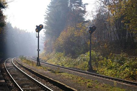 Herbststimmung in Altenschwand Richtung Bodenwöhr