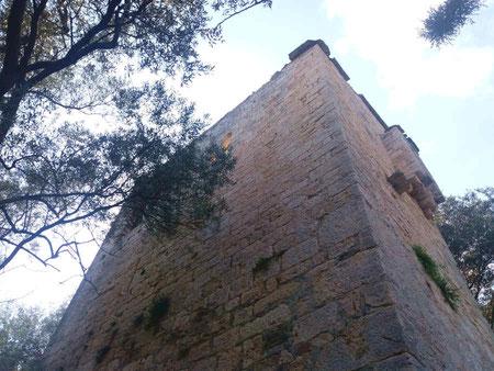Esterno della Torre