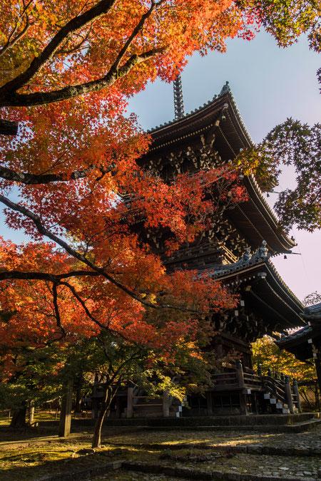 京都・真如堂紅葉 塔