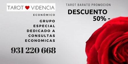 Grupo de tarotistas especiales dedicadas a consultas económicas